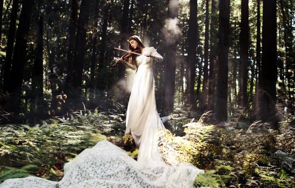 devushka-skripka-muzyka-les